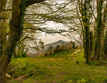 Carningli from Nevern Castle, copyright Will Shaman
