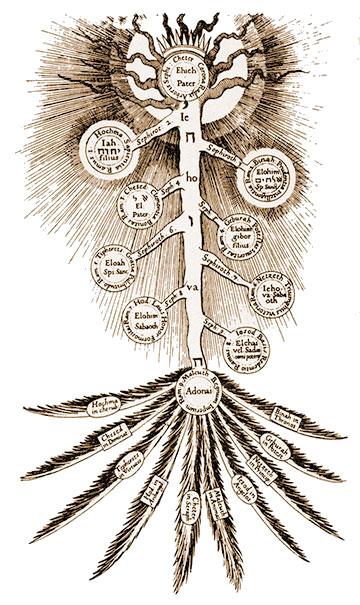 My Tree of Life Adventures
